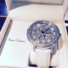 食いつかれる腕時計(30,000円くらい)